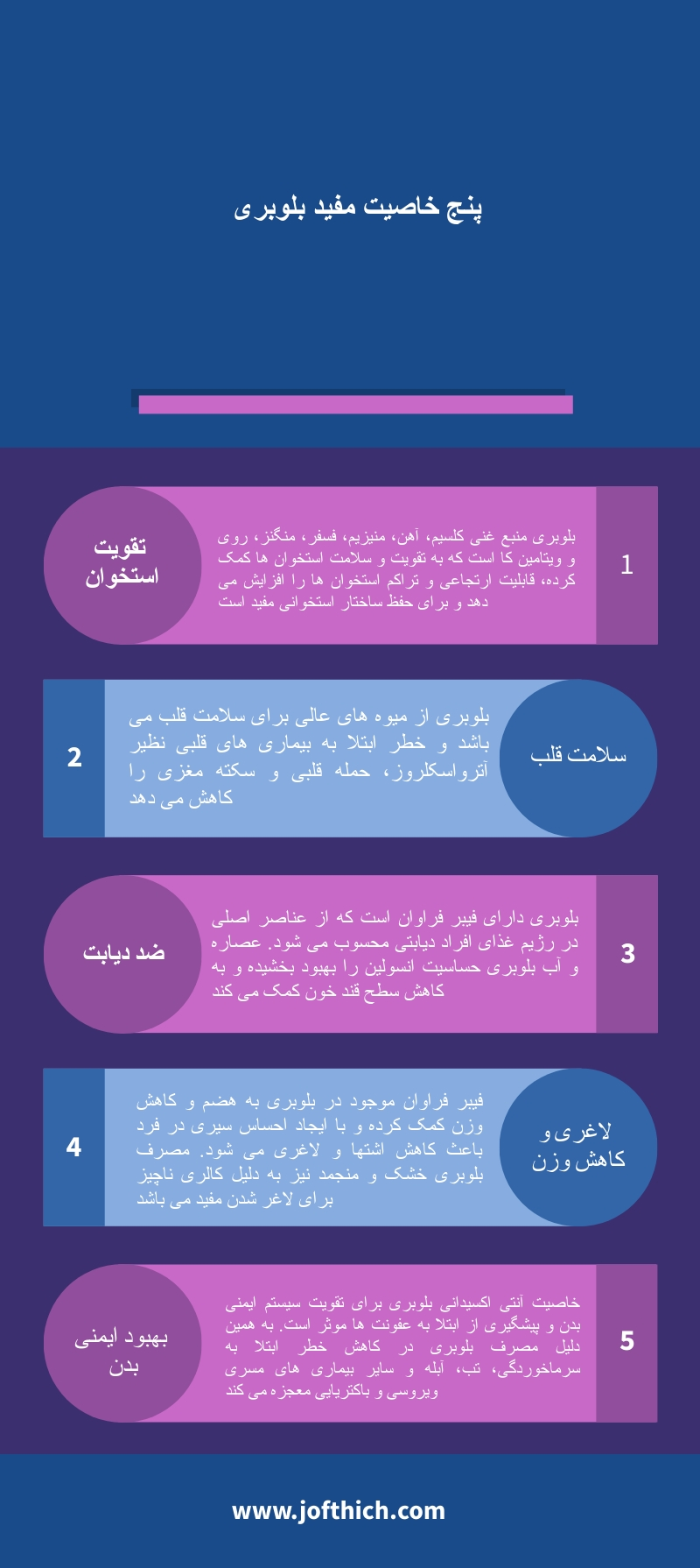 پنج خاصیت مفید بلوبری